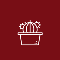 کاکتوس بذری