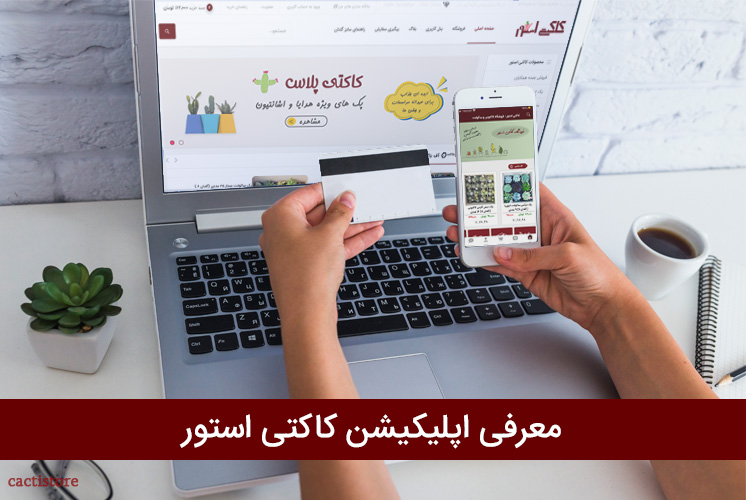 معرفی اپلیکیشن کاکتی استور