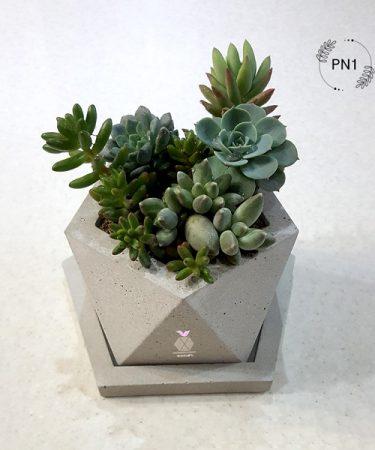 گلدان بتنی 5 ضلعی کد PN1