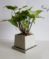 گلدان بتنی بزرگ کد SQ1