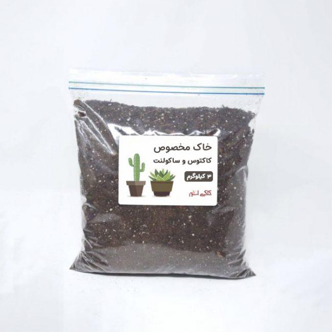 خاک مخصوص کاکتوس 3 کیلوگرم
