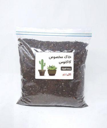 خاک مخصوص کاکتوس بسته کوچک