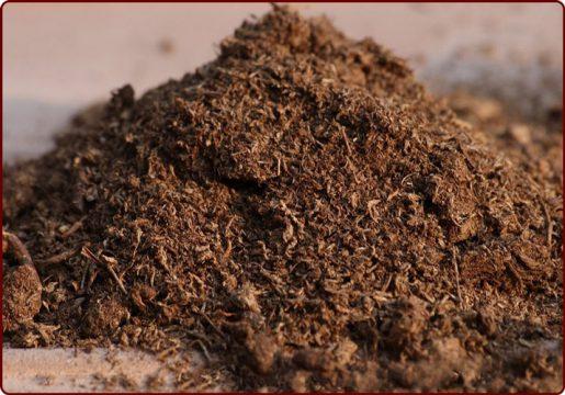 چگونه خودمان خاک کاکتوس درست کنیم؟