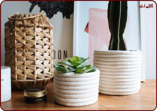 تزئین گلدان گیاهان آپارتمانی -تزیین گلدان پلاستیکی مشکی
